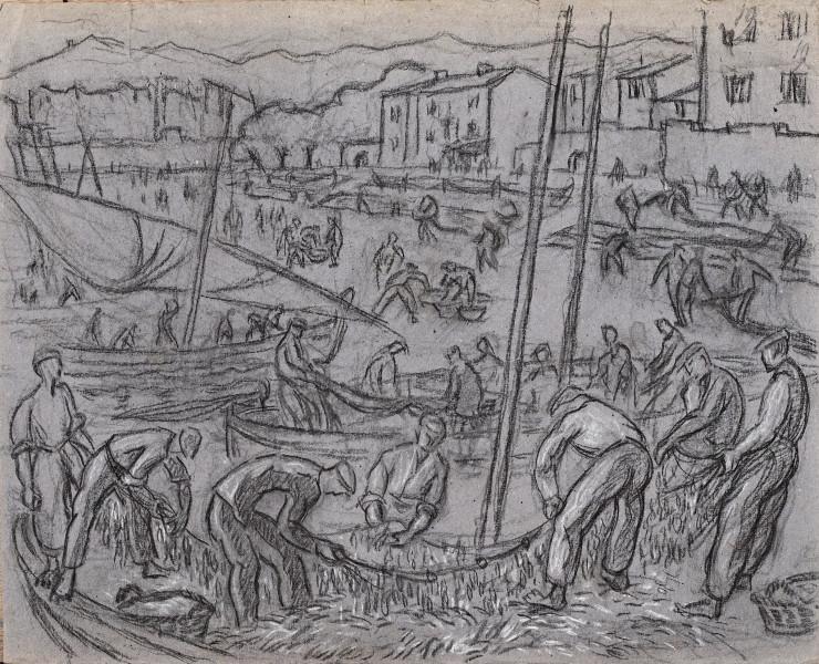Collioure, la levée de filets