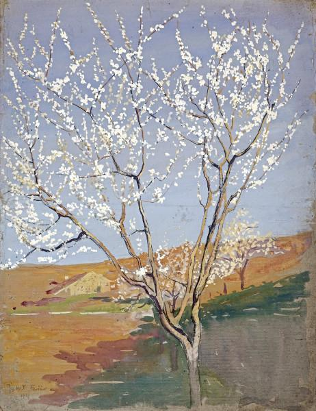 Verger fleuri, 1923
